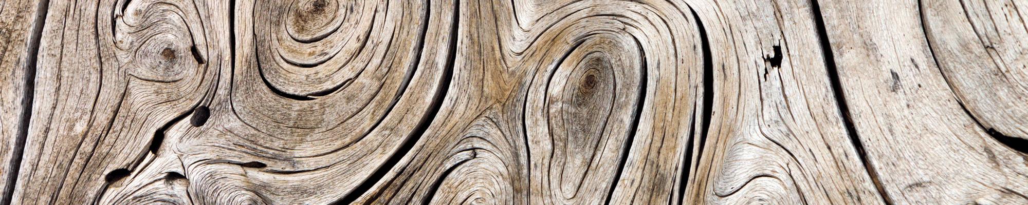 HEADER--hout-huisstijl